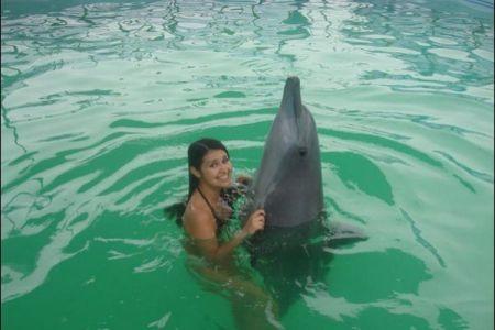 Bermain bersama lumba-lumba