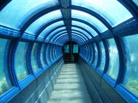 Akuarium bawah laut di Pulau Putri