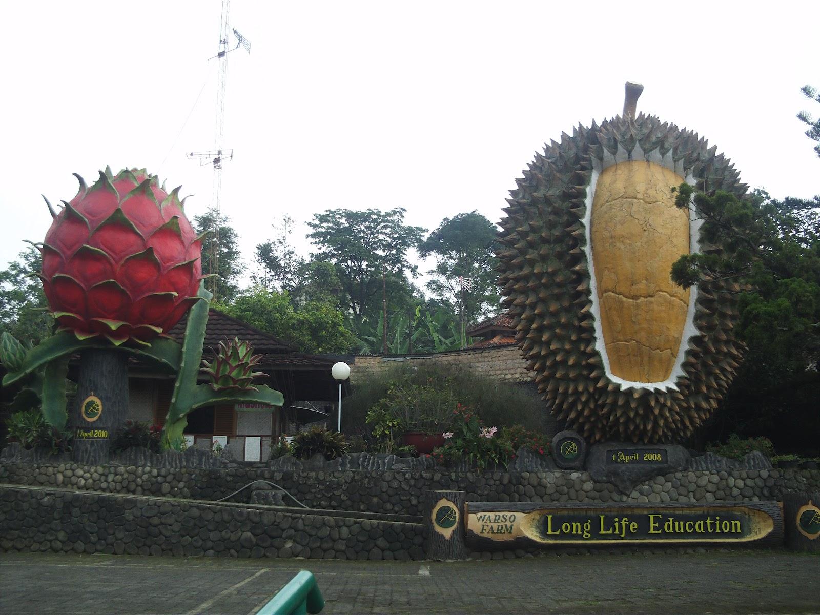 20 Tempat Wisata Alam Di Puncak Bogor Tempat Wisata | Share The ...